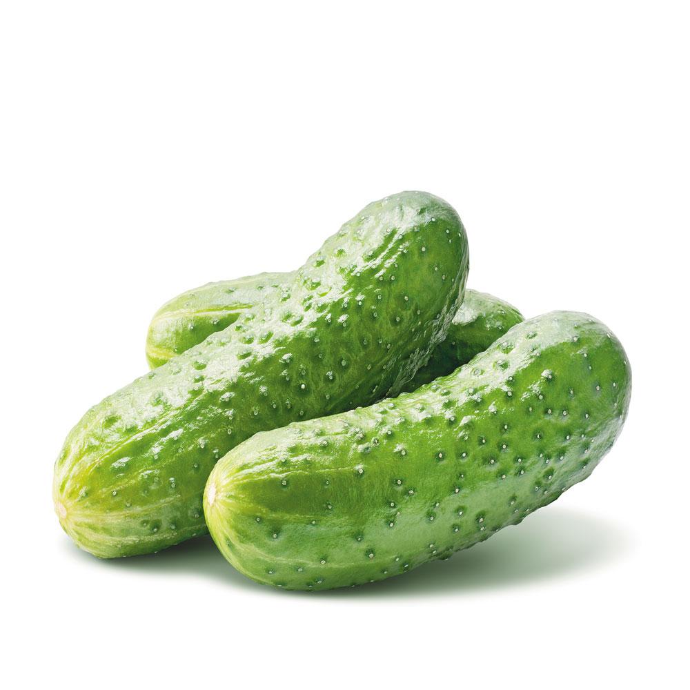 Company-1000-Cucumber