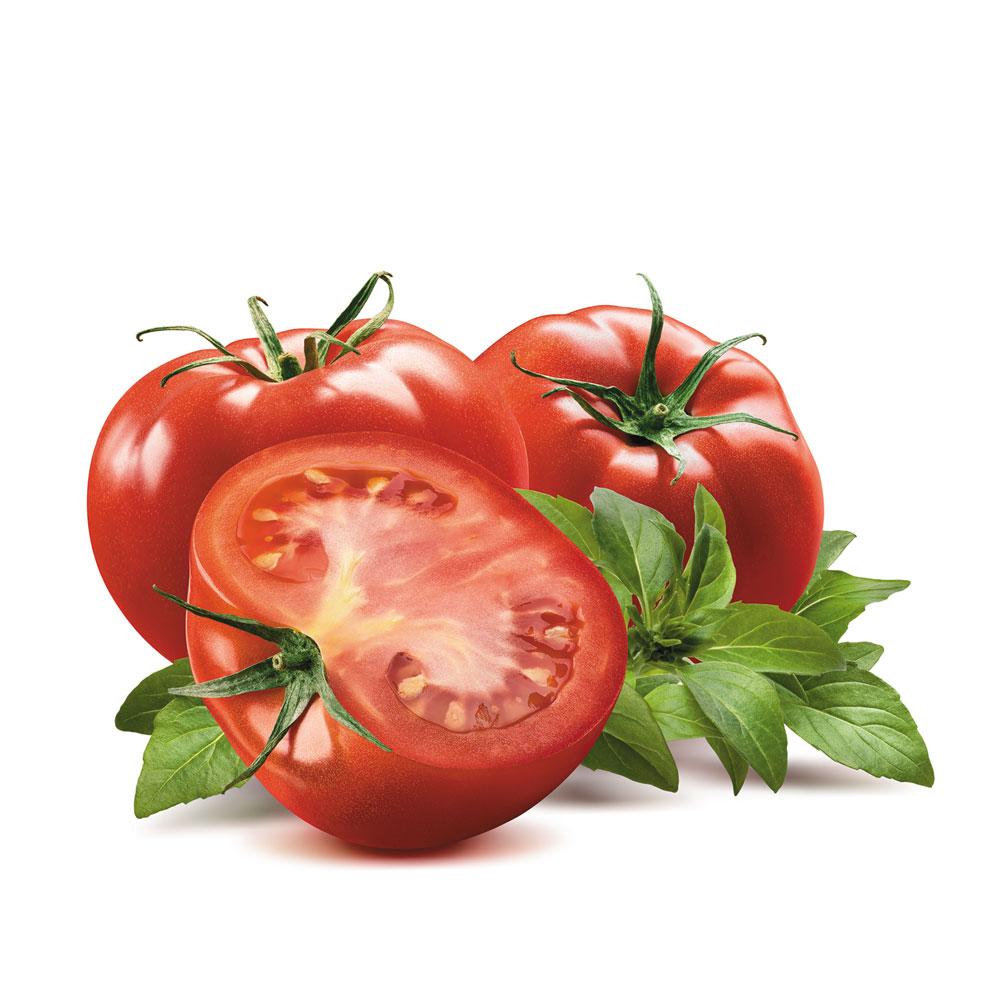 Company-1000-Tomato
